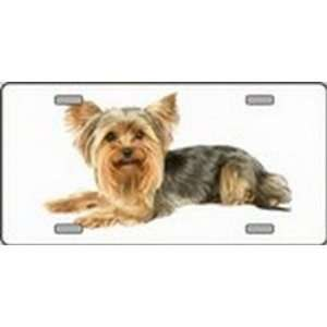 Yorkshire Terrier Dog Pet Novelty License Plates Full Color