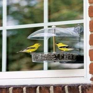 DROLL YANKEES WINNER WINDOW BIRD FEEDER W 1