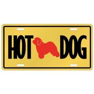 New  Old English Sheepdogs   Hot Dog  License Plate Dog