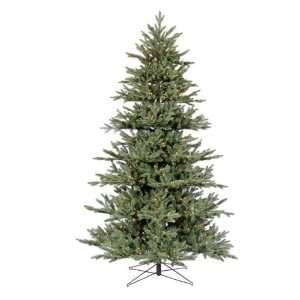 Blue Noble Fir Medium Pre lit Clear Christmas Tree