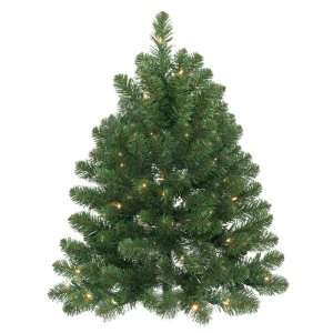 Pack of 2 Pre Lit 3 Oregon Fir Christmas Wall Trees   50